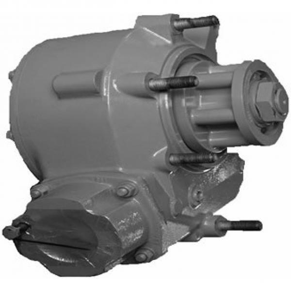 Caterpillar 349EL Hydraulic Final Drive Motor #2 image