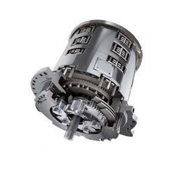 Caterpillar 421-4381 Hydraulic Final Drive Motor #2 image